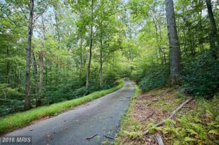 10700 Sycamore Springs Lane, Great Falls, VA 22066 (#FX9741820) :: Pearson Smith Realty