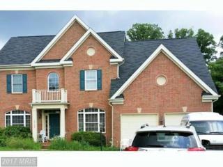 3799 Maryalice Place, Falls Church, VA 22041 (#FX9753881) :: LoCoMusings