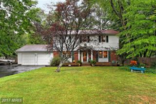 4036 Doveville Lane, Fairfax, VA 22032 (#FX9770919) :: Pearson Smith Realty