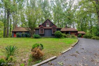 1030 Millwood Road, Great Falls, VA 22066 (#FX9793485) :: Pearson Smith Realty