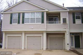 1305-B Windleaf Drive #162, Reston, VA 20194 (#FX9851393) :: Pearson Smith Realty