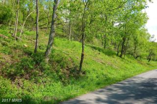 19-LOT Laurel Court, Oakland, MD 21550 (#GA8087329) :: Pearson Smith Realty
