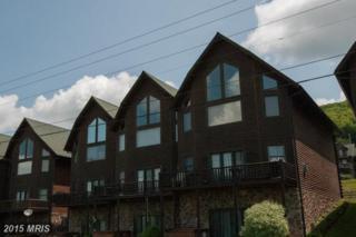 16 Cedar Shores Drive #15, McHenry, MD 21541 (#GA8600535) :: Pearson Smith Realty