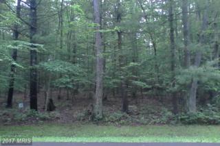 LOT 20 Wood Ridge Road, Swanton, MD 21561 (#GA8660915) :: LoCoMusings