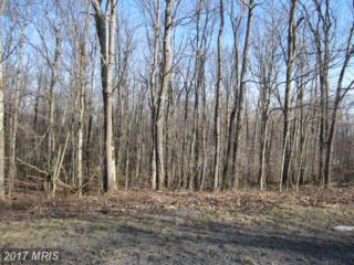 Mosser Road, McHenry, MD 21541 (#GA9589912) :: Pearson Smith Realty