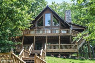 125 Highwood Drive, McHenry, MD 21541 (#GA9631872) :: Pearson Smith Realty