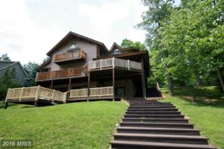 1419 Sandy Shores Road, McHenry, MD 21541 (#GA9679828) :: Pearson Smith Realty