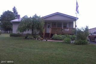 424 Bonnie Boulevard, Oakland, MD 21550 (#GA9799517) :: LoCoMusings
