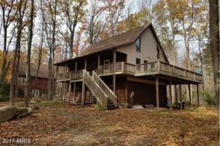 1182 Limpopo Lane, McHenry, MD 21541 (#GA9802781) :: Pearson Smith Realty