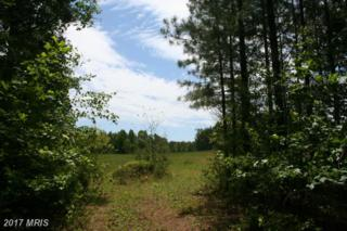 Heights Hill Road, Barboursville, VA 22923 (#GR9660662) :: Pearson Smith Realty