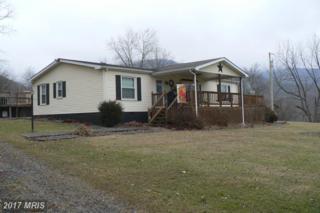 132 Armistead Lane, Maysville, WV 26833 (#GT9579365) :: LoCoMusings