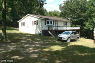 22 Hangmans Trail, Maysville, WV 26833 (#GT9761663) :: Pearson Smith Realty