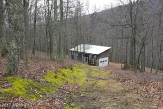 Off Route 220, Old Fields, WV 26845 (#HD9580447) :: Pearson Smith Realty