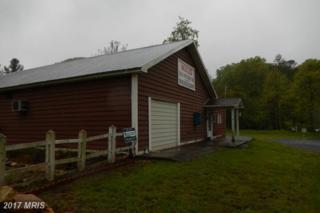 5584 Thorne Bottom Road, Lost River, WV 26810 (#HD9667806) :: LoCoMusings