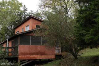 136 High Meadow Road, Lost River, WV 26810 (#HD9780953) :: LoCoMusings