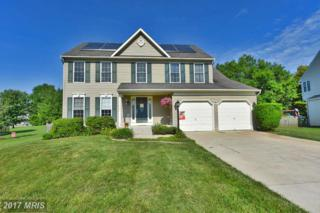 1407 Bayview Drive, Havre De Grace, MD 21078 (#HR9680801) :: Pearson Smith Realty