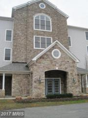 4700 Water Park Drive J, Belcamp, MD 21017 (#HR9683432) :: Pearson Smith Realty