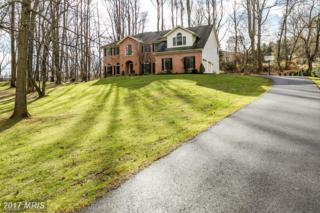 1704 Ivy Stone Way, Forest Hill, MD 21050 (#HR9837269) :: LoCoMusings