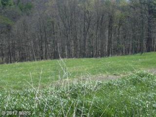 8 Sleepy Meadows, Augusta, WV 26704 (#HS7944049) :: Pearson Smith Realty