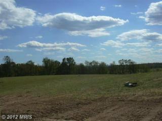 13 Sleepy Meadows, Augusta, WV 26704 (#HS7944102) :: Pearson Smith Realty