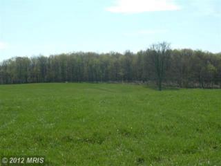 27 Sleepy Meadows, Augusta, WV 26704 (#HS7944108) :: Pearson Smith Realty