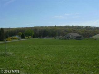 30 Sleepy Meadows, Augusta, WV 26704 (#HS7944125) :: Pearson Smith Realty