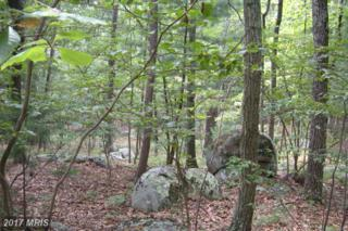 7-LOT # Mountain View Drive, Capon Bridge, WV 26711 (#HS8173122) :: Pearson Smith Realty