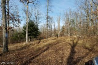 LOT 14 Olympic Drive, Augusta, WV 26704 (#HS8749140) :: LoCoMusings