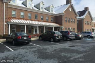 11035 Stratfield Court, Marriottsville, MD 21104 (#HW9667574) :: Pearson Smith Realty