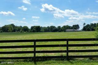 Woodbine Road, Woodbine, MD 21797 (#HW9750320) :: LoCoMusings
