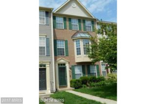 6109 Cliffside Trail, Columbia, MD 21045 (#HW9813353) :: Pearson Smith Realty