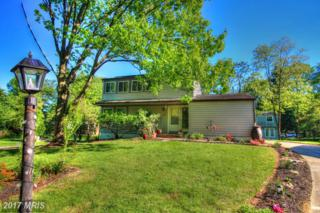 6189 Greenblade Garth, Columbia, MD 21045 (#HW9927834) :: Pearson Smith Realty