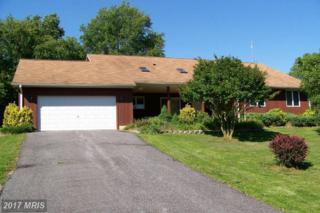 32180 Shorewood Road, Galena, MD 21635 (#KE7804562) :: Pearson Smith Realty