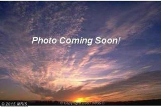 Roberts Drive, Galena, MD 21635 (#KE8271632) :: Pearson Smith Realty