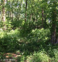 Turners Point Road, Kennedyville, MD 21645 (#KE8486619) :: Pearson Smith Realty