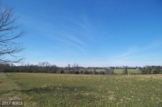 Homestead Road, Worton, MD 21678 (#KE9589209) :: Pearson Smith Realty
