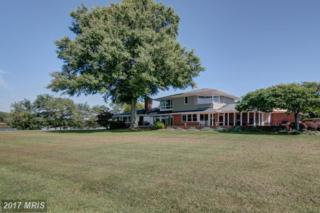 5075 Grays Inn Creek Road, Rock Hall, MD 21661 (#KE9739155) :: Pearson Smith Realty