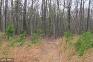 1 Sawgrass Estate, King George, VA 22485 (#KG8331025) :: Pearson Smith Realty