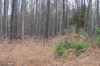 2 Sawgrass Estate, King George, VA 22485 (#KG8331026) :: LoCoMusings