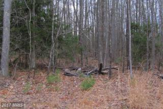 3 Sawgrass Estate, King George, VA 22485 (#KG8331027) :: LoCoMusings