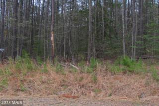 4 Sawgrass Estate, King George, VA 22485 (#KG8331028) :: LoCoMusings