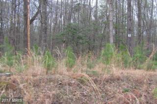 5 Sawgrass Estate, King George, VA 22485 (#KG8331030) :: LoCoMusings