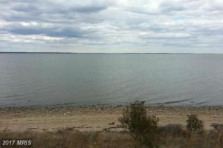 Sandy Beach Lane, King George, VA 22485 (#KG9665223) :: Pearson Smith Realty