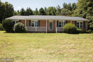 4458 Willow Tree Lane, King George, VA 22485 (#KG9759317) :: LoCoMusings