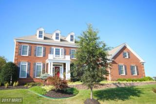 20895 Mcintosh Place, Leesburg, VA 20175 (#LO9589321) :: Pearson Smith Realty