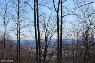 0 Forest Hill Lane, Bluemont, VA 20135 (#LO9595664) :: Pearson Smith Realty