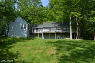 38313 North Fork Road, Purcellville, VA 20132 (#LO9612637) :: Pearson Smith Realty