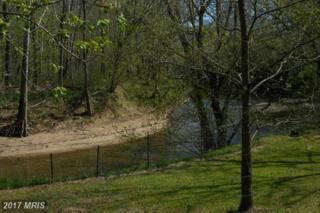 0 Lime Kiln Road, Middleburg, VA 20117 (#LO9632299) :: LoCoMusings