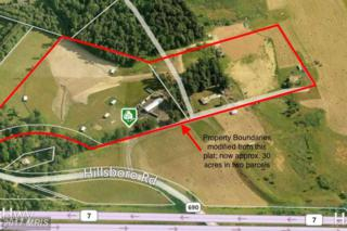 16980 Hillsboro Road, Purcellville, VA 20132 (#LO9657693) :: Pearson Smith Realty