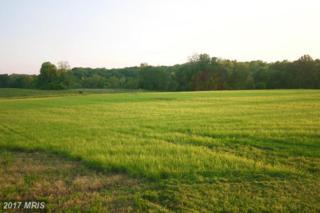 35679 Paxson Road, Purcellville, VA 20132 (#LO9658677) :: Pearson Smith Realty